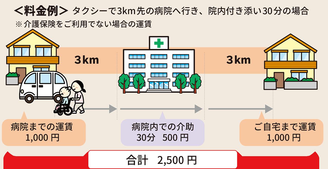 タクシー送迎以外の時間も介護スタッフがトータルサポート